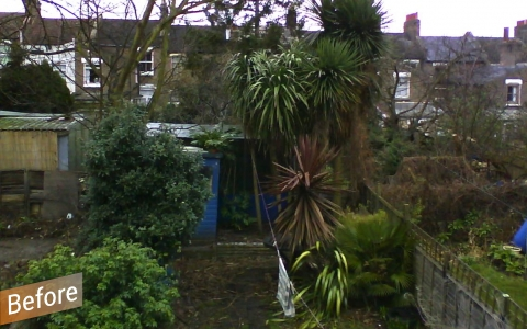 London garden before renovation